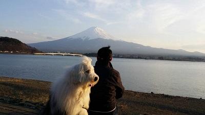 富士山とグー太と僕