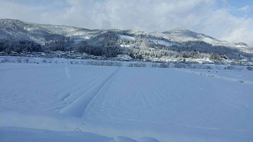 雪の尾花沢